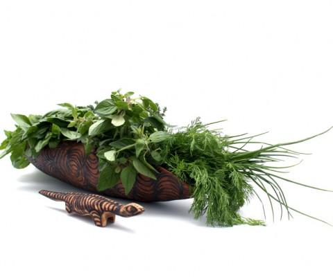 Matjarra Herbs